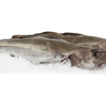 3F kalder Seafood-ledelsen for kold og kynisk