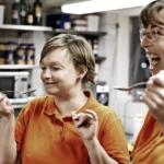 Københavns Madhus lancerer vidensportal